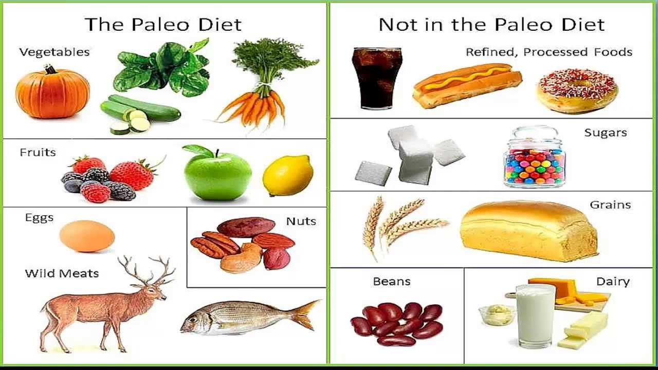 Paleo diet food list PDF