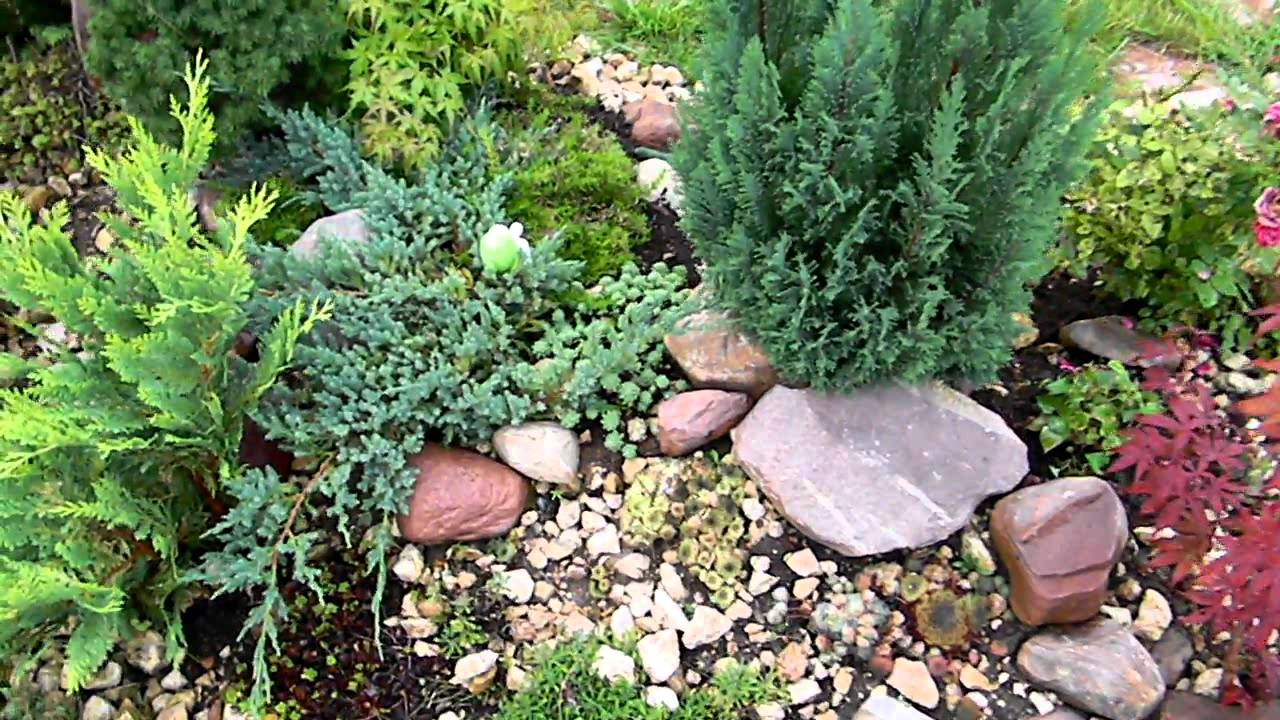 Small rock garden for Small rock garden designs