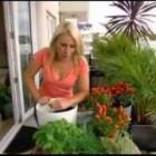 Greenbo Rail Planter Pot Urban Plants Flowers Hanger For Railing / Balcony
