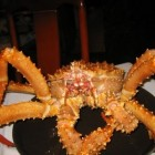 King Crab Cut up while still alive by chinese chef! (Speedy Version)