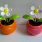 FlipFlap  Solar powered Flower Plant Flower Pot TOY .flv