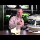 AeroGarden Planting Your Indoor Herb Garden – Week 1 Indoor Gardening Month