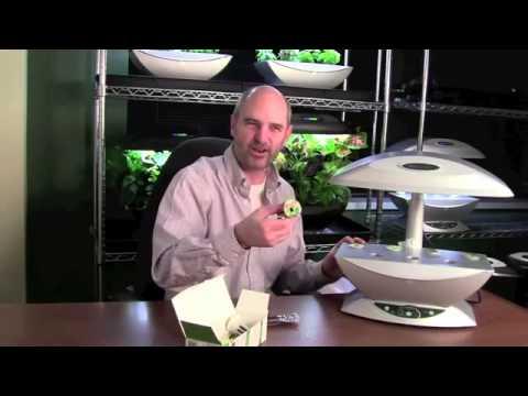 Aerogarden planting your indoor herb garden week 1 for Indoor gardening expo 2014