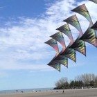 Light Hearted Kites