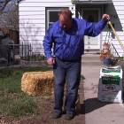 Planting Grass Seed- Over Existing Grass or New Lawn