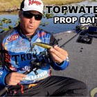 Exclusive Topwater Fishing Tip: How to Fish a Prop Bait – What you need to know