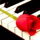Love Quotes & Piano Music