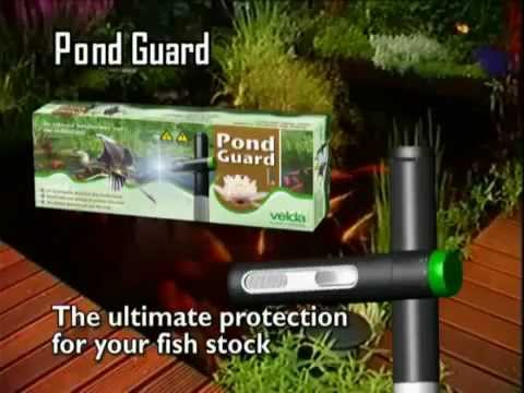 Garden Pond Guards Of Velda Pond Guard Heron Deterrent At Water Gardening Direct