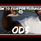 """How to Fishing For Flounder with """"Finger Mullet"""""""