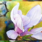 How to Paint the Magnolia Flower, Watercolor Painting, Part 1