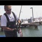 Saltwater Fishing : Saltwater Pier Fishing Techniques