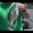 *How to fish brushpiles* Fishing tips that make catching Crappie easier.