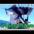 How To Fishing Miami