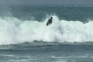 SurflineTV TRICK TIPS: BACKSIDE AIR-REVERSE