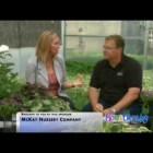 Shade Gardening – Moms Everyday Interview with McKay Nursery