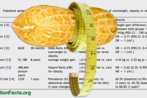 Nuts and Obesity: The Weight of Evidence